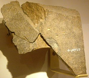 The Tel Dan Inscription is housed at the Israel National Museum
